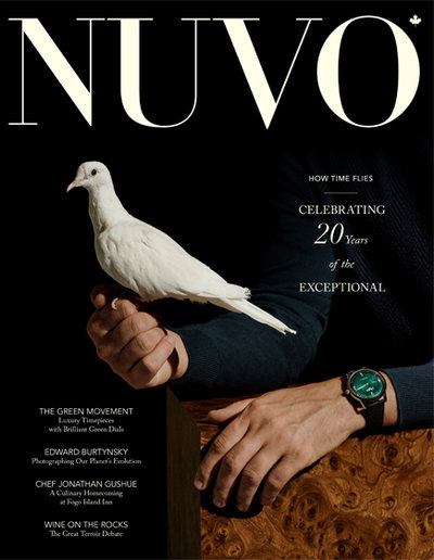 Small nuvo cover