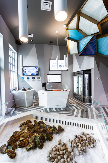 Press kit | 760-10 - Press release | Reinventing a walk on the bottom of the sea - Jean de Lessard, Designers Créatifs - Commercial Interior Design - Glass case details - Photo credit: Imagicom, Francois Laliberté