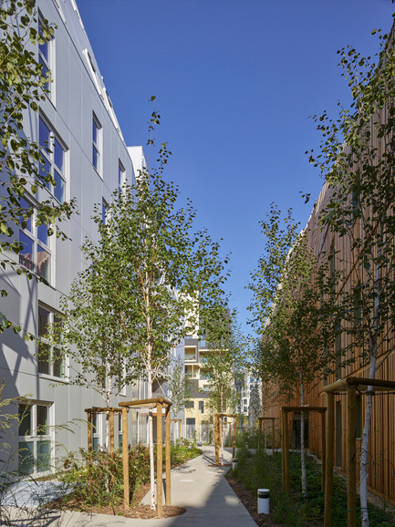 Press kit | 898-07 - Press release | Rive Seine _ Macro Lot A5 - Tetrarc - Residential Architecture -   Birch alleyway<br> - Photo credit:   Stéphane Chalmeau