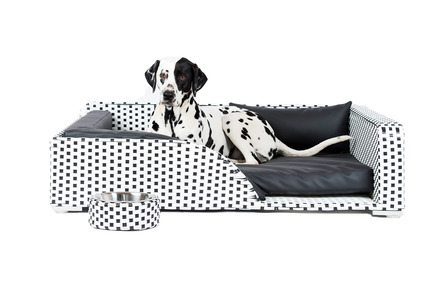 Press kit | 2438-01 - Press release | Swiss Start-Up Embellishes the Lives of Dogs and Owners - Volentis GmbH - Product - IDA Silver Award Winner - LABONI Dog Bed Cosmopolitan - Photo credit: Volentis GmbH<br>