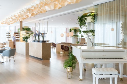Press kit | 2065-02 - Press release | Botanist Restaurant to Open its Doors on April 24 in Vancouver, BC - Fairmont Pacific Rim - Lifestyle - Botanist Dining Rooom - Photo credit: Ema Peter