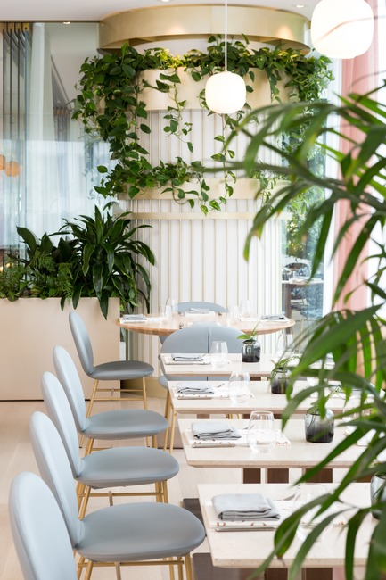 Press kit | 2065-02 - Press release | Botanist Restaurant to Open its Doors on April 24 in Vancouver, BC - Fairmont Pacific Rim - Lifestyle - Botanist Dining Room - Photo credit: Ema Peter
