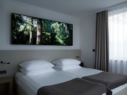 Press kit | 3141-01 - Press release | Forest of Eden - SofijaSilvia - Art -  Project title: Forest of Eden<br>Lightbox by artist: SofijaSilvia<br>Hotel Eden, Rovinj, Croatia  - Photo credit: SofijaSilvia