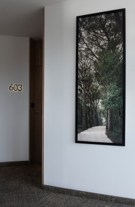 Press kit | 3141-01 - Press release | Forest of Eden - SofijaSilvia - Art -  Project title: Forest of Eden<br>Artist: SofijaSilvia<br>Hotel Eden, Rovinj, Croatia  - Photo credit: SofijaSilvia