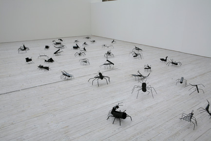 Press kit | 701-07 - Press release | Zoo - Musée d'art contemporain de Montréal (MAC) - Event + Exhibition - Insects, 2007SHRIGLEY, DavidMétal et peinture noire76 pièces, maximum 35 x 30 cm, minimum 10 x 6 cmCollection privée, Suisse